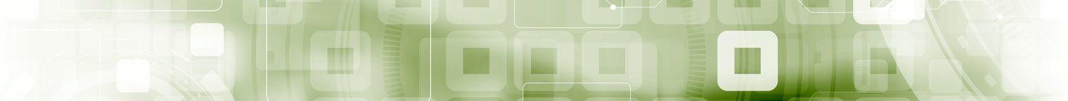 TopSales Premium Maklerverwaltungsprogramm plus Webservice